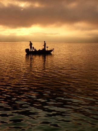 bass-fishing