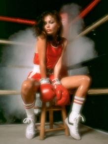 boxer