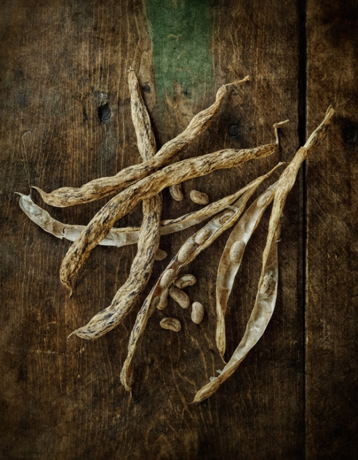 dried-rattlesnake-beans