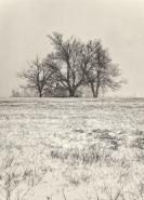 farmstead_snow_vert_bw