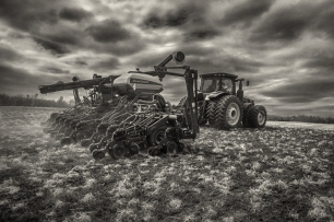 mathis_corn-planting_2015_08a