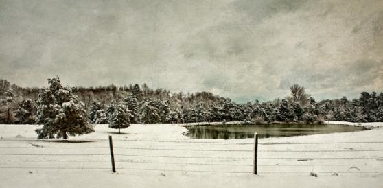 snow_pond_c