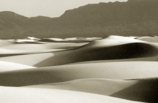 white-sands