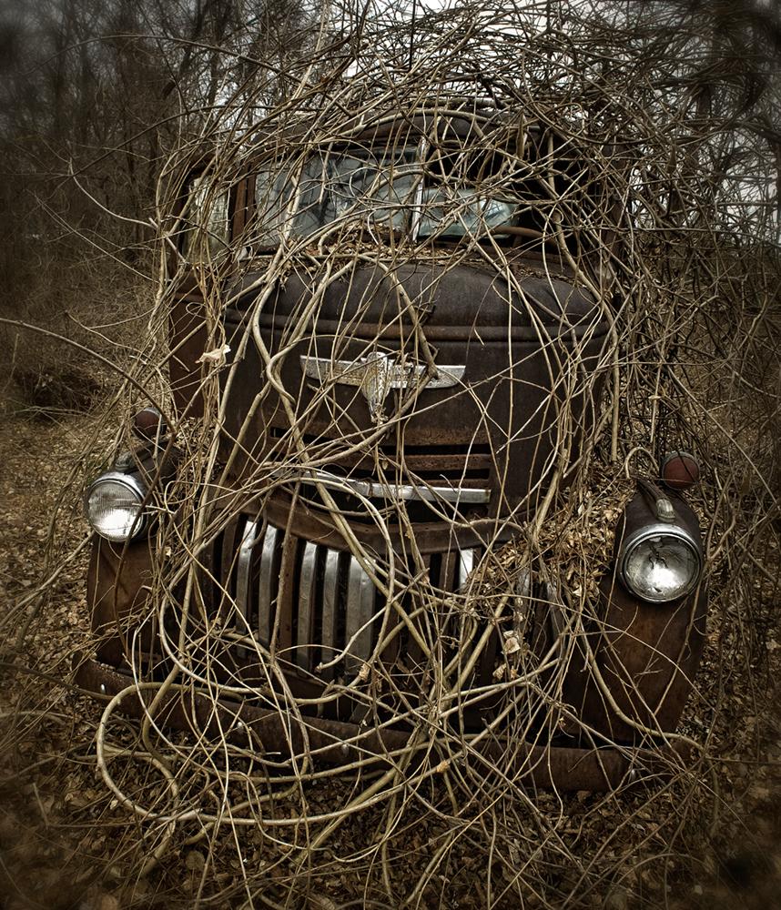 winter_truck_vines
