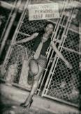 zarah_fence_bw_2
