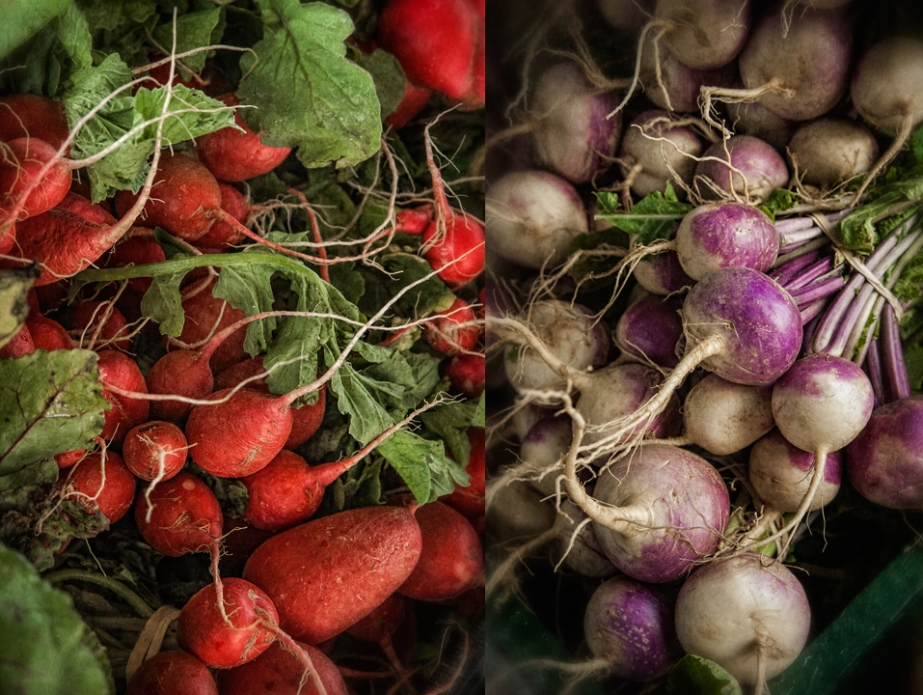 radishes_turnips