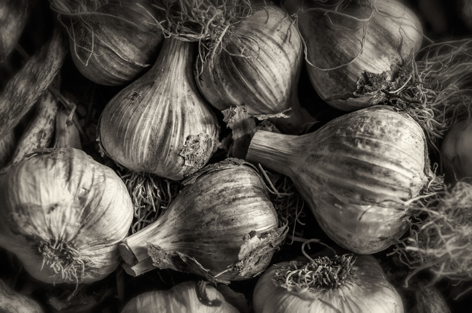 garlic cloves_bw