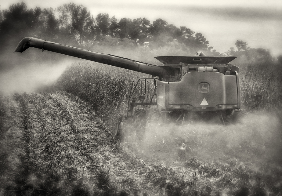 corn combine_new hope_bw
