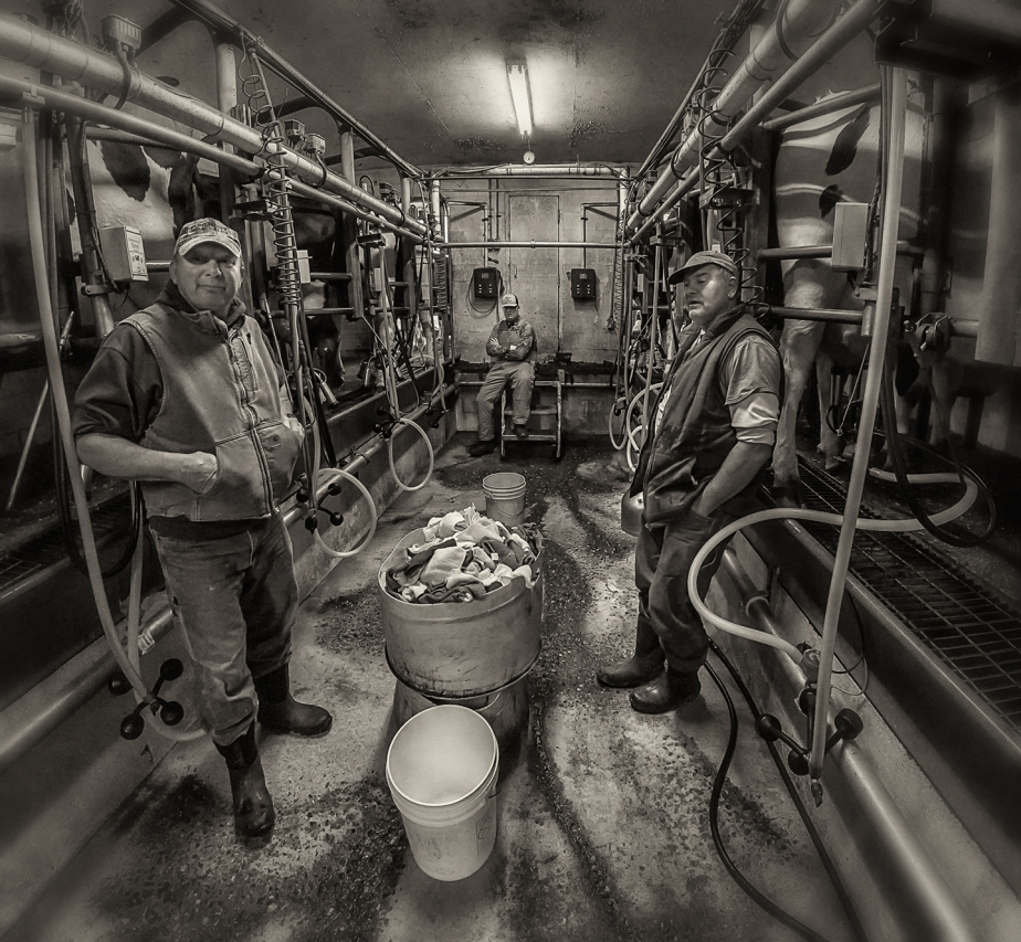 williams dairy_parlor_12_12_17_02A