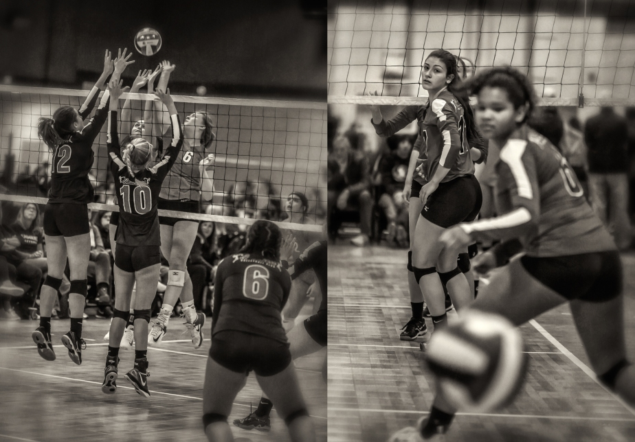 gso_volleyball_group_04