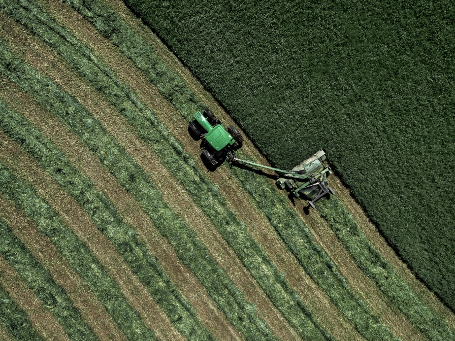 mathis_mowing wheat_02