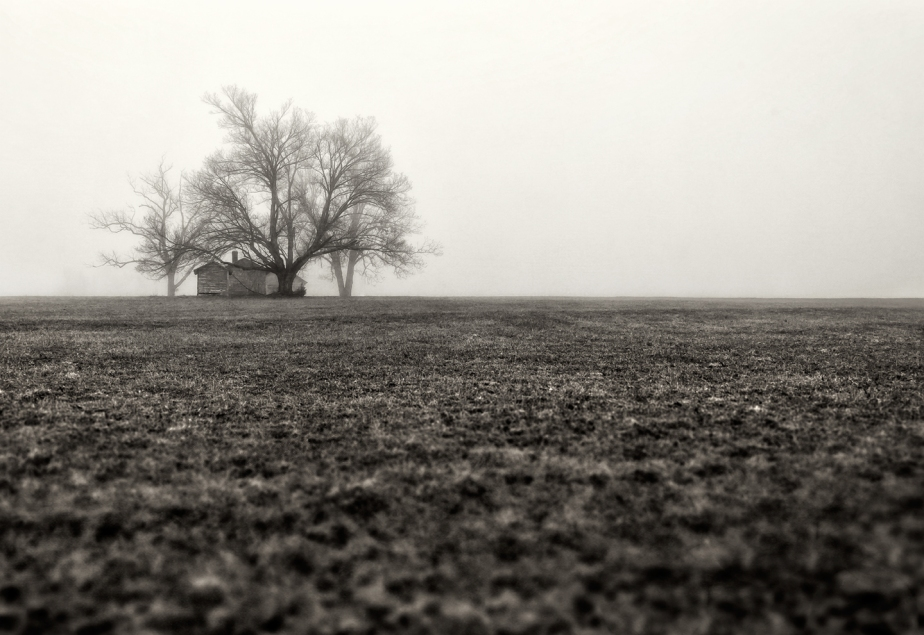farm in fog_2018_bw