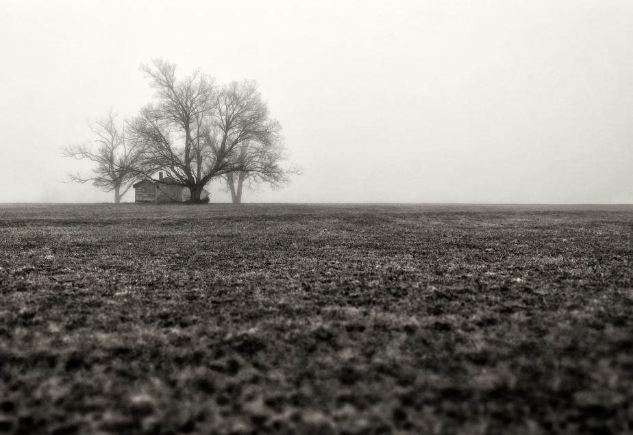 farm in fog_2018_bw