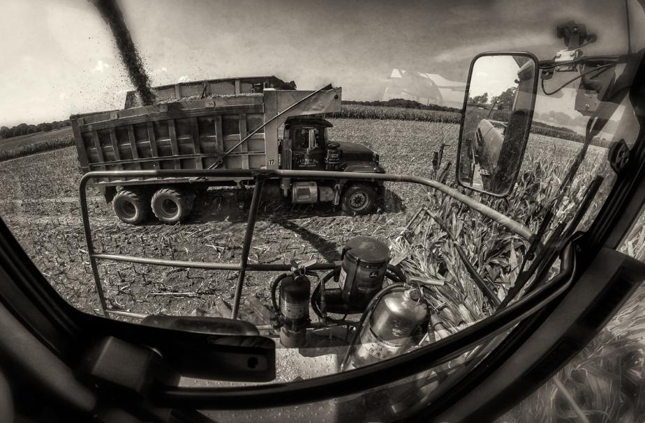 mathis_silage_truck_fisheye