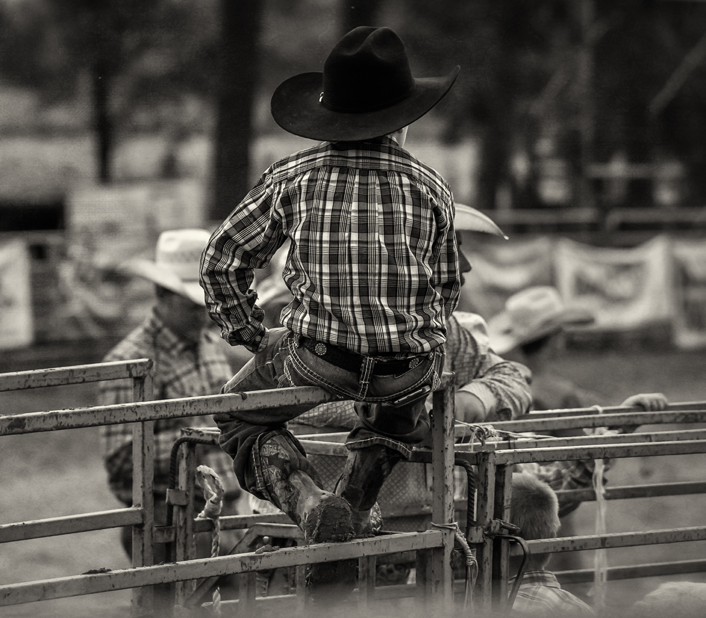 rodeo_ lil cowboy_back_bw