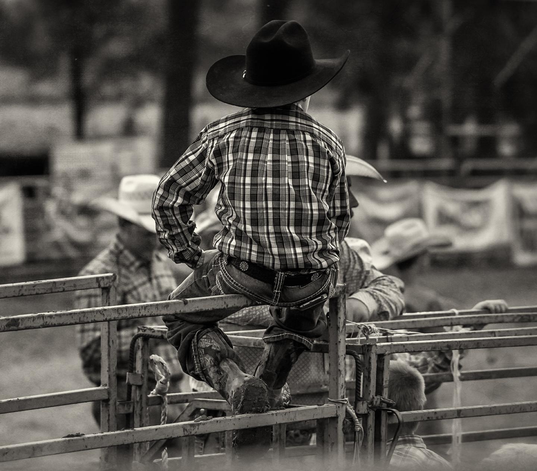 rodeo_ lil cowboy_back_bw