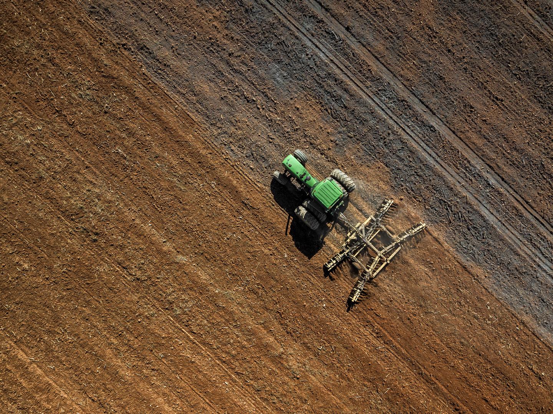 williams_planting barley_08